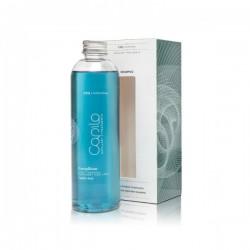 Eva Capilo Invigorating Treatment Shampoo (250ml)